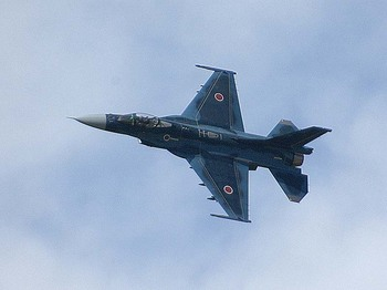 F-2A/~1.JPG